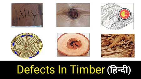 defect in timber in hindi